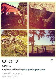 The Tig Meghan Markle, Meghan Markle Instagram, September 16, Harry And Meghan, World, Charlotte Casiraghi, Green, Archive, Royalty