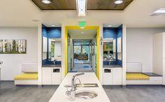 Garfinkle Orthodontics - Tooth brushing station, on deck, Orthodontic Office in Portland Design by Emmett Phair