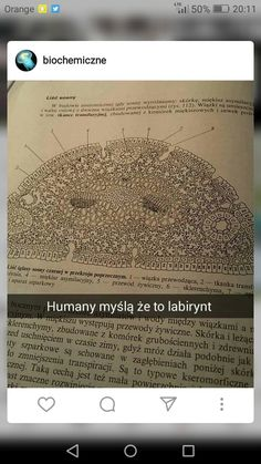 Science Humor, School Memes, Best Memes, Poland, Texts, I Am Awesome, Lol, Funny, Calla Lilies