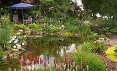 Ein Teich in der Nähe von Sitzplätzen