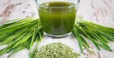 Mladý ječmen patří mezi takzvané superpotraviny, které jsou nám k dispozici jako pomocníci pro…