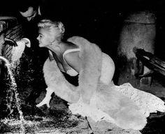 Jayne Mansfield, Norma Jean, Bombshells, Marilyn Monroe, Movie Stars, Candid, Pink Ladies, Mystery, Hollywood