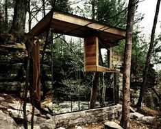 1000 Images About Mirrored Tree House On Pinterest Tree