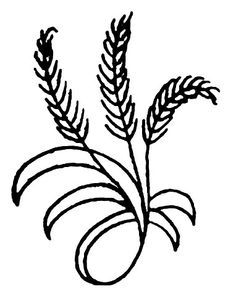 small wheat spray handkerchief