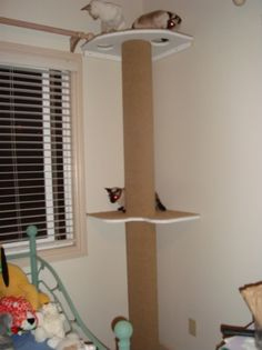 How to build your own cat tree/cat pole