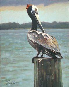 pelican drawings   Charleston Pelican Painting - Charleston Pelican Fine Art Print