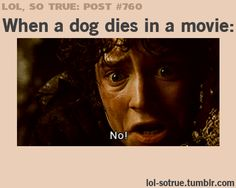 Haha dont judge :p its a very sad moment . Dogs arent supposed to die in movies