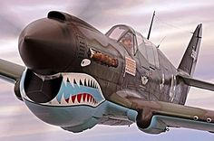 Shark Mouth Aircraft-rayp-40houston1s.jpg