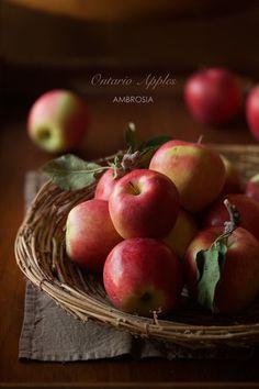 少し前にジャムを作ろうとしたとき、熱にも水にも全く屈しず、驚異の忍耐力をみせた 骨のある林檎、アンブロジア。   これでタタンを作ると...