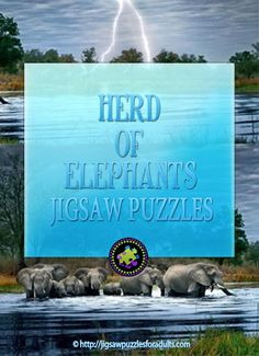 Herd of Elephants Jigsaw Puzzle by Artist Alexander von Humboldt is the perfect 2000 piece Panoramic jigsaw puzzle for anyone that loves elephants! Perfect for the whole family! Hobbies For Couples, Cheap Hobbies, Fun Hobbies, Difficult Jigsaw Puzzles, Hobby Town, Herd Of Elephants, Elephants Never Forget, Famous Artists, Hobby Ideas