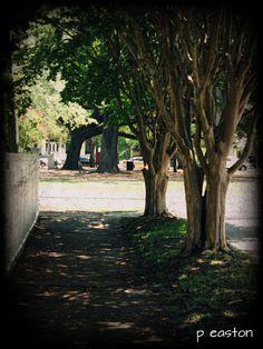 Take a Walk, In Beautiful Downtown Historic Pensacola Village~ Pensacola, Florida!