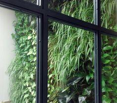 jardn vertical de interior en madrid alicante forestal u jardines verticales pinterest