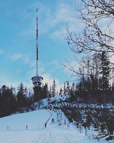 Sendeturm Cn Tower, Travel, Instagram, Viajes, Trips, Traveling, Tourism, Vacations