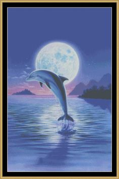 Day Of The Dolphin [MGL-24] - $16.00 : Mystic Stitch Inc, The fine art of counted cross stitch patterns