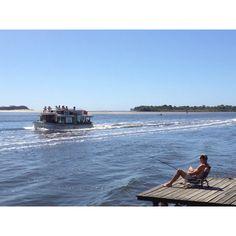 Noosa Ferry on Noosa River