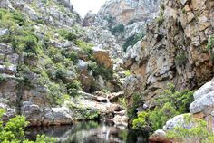 Crystal Pools in the RSA..