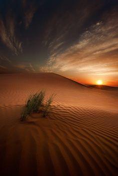 Voyage Sultanat d'Oman - Desert Light by Ahmed Altoqi - Photo 6400711 / 500px