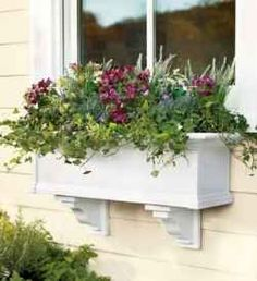 1000 Images About Window Boxes On Pinterest Window