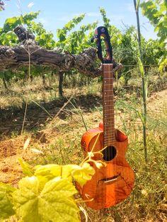 Flight mustang Ukulele Pictures, Mustang, Music Instruments, Guitar, Mustangs, Musical Instruments, Mustang Cars, Guitars