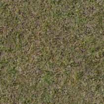 Free Textures for 3d, 3Dview, Ground, Europe, Grass