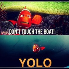 YOLO does NOT solve anything.. I repeat: YOLO will only get you kidnapped and trapped in a fish tank forced to jam the filter and bath in your own filth.