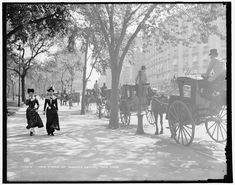 Cab stand at Madison Square, New York, ca. 1900