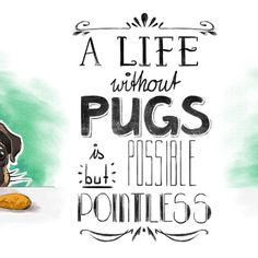 A life without #pugs is possible but pointless. #puglove