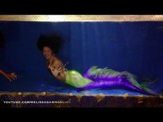 1000 images about mermaid traveling tanks and bus tour on for Fish tank mermaid