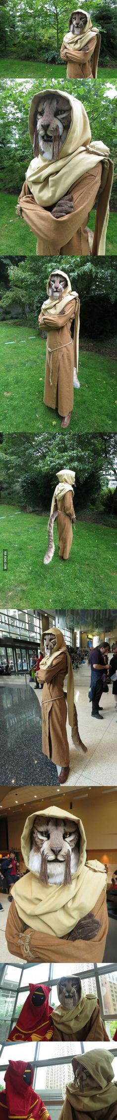 Skyrim Khajiit cosplay - M'aiq the Liar.  THIS IS AMAZING.