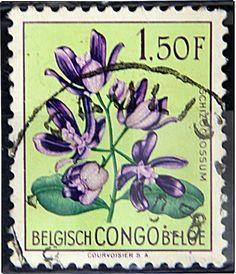 Congo Democratic Republic,  FLOWERS IN NATURAL COLORS. Scott 330  A86.  1.50f, Perf 11 1/2.  Issued 1960 June 30.  Unwmk. 21 x 25 1/2 mm.