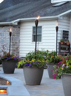 torches in planters