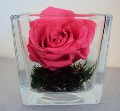COMPOSITION florale ROSE éternelle fleur naturelle & MOUSSE naturelle LUXE Artifleurs http://www.amazon.fr/dp/B00BXNTHAM/ref=cm_sw_r_pi_dp_S7vGub144VA1Z