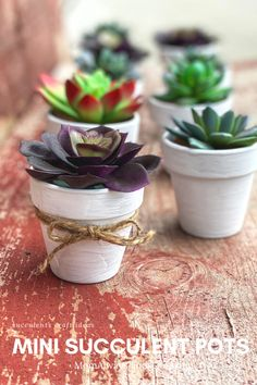 Cute Succulent Pots Craft | Easy To Make With Real or Artificial Succulents