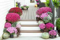The biggest impact is a range of the same color mums on a porch. Add some accent greens, and it's an easy way to decorate for fall. Mum Planters, Garden Planters, Purple Mums, Fall Mums, Diy Pumpkin, Girl Blog, Autumn Garden, Autumn Inspiration, Shades Of Purple