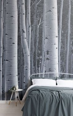 These birch tree wallpaper murals are perfect for creating a nature inspired space in any room of the home. Creating an accent tree wall add depth and dimention to a space, creating the perfect backdrop for styling a small space. Choosing a mural tha Wood Effect Wallpaper, Tree Wallpaper Mural, Zen Wallpaper, Forest Wallpaper, Slim Tree, Nordic Interior, Aesthetic Bedroom, Wall Treatments, Small Spaces