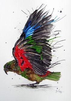 Kea Splash by www.fiona-clarke.com - watercolor painting