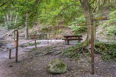 Kaán-forrás, a Visegrádi-hegység legkedveltebb forrása! Garden Bridge, Arch, Outdoor Structures, Longbow, Wedding Arches, Bow, Arches, Belt
