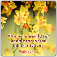 Psalm 73:25