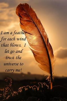 I am a feather for each wind that blows.  I let go and trust the universe to carry me!