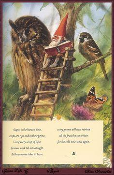 "David the Gnome, Owl and Bird _ David Gnomo, Gufo e Passerotto - Illust: Rien Poortvliet , from the book ""Gnome Life"" - August"