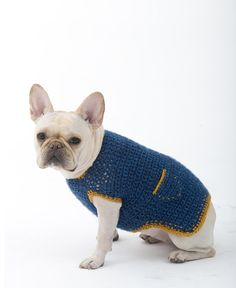 Casual crochet dog sweater in Lion Brand yarn - find the FREE pattern at LoveKnitting