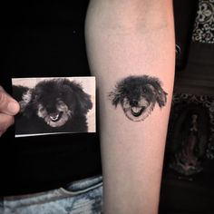 Small Dog Tattoos, Small Dogs, Print Tattoos, 1, Instagram, Thanks, Little Dogs, Pug Dogs, Puppys