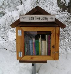 Tiny House Libraries- Mailbox-style micro-libraries around the U.S.  Love this idea. Go to http://www.littlefreelibrary.org/ to find out how to join!