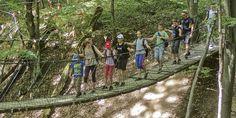 Öt kirándulás, amit a gyerkőcök is imádni fognak - rész Trekking, Street View, Marvel, Tours, Outdoor Decor, Education, Speech Language Therapy, Hiking, Educational Illustrations