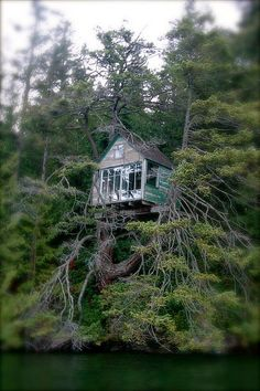 This awesome tree house was perched in a tree along the shore of Lake Whatcom, WA.