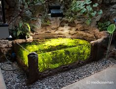 """amazing 700G Indoor Sunken Pond - except it would look even nicer without all the """"paraphernalia"""" laying around."""
