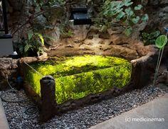 amazing 700G Indoor Sunken Pond