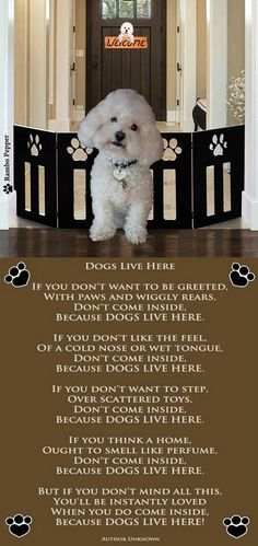 Bichon - Dogs Live Here poem