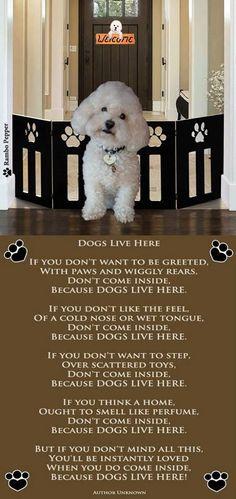 Bichon - Dogs Live Here poem