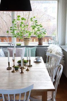 Moss and brass candlesticks